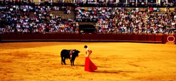 Bullfighting ring in Spain