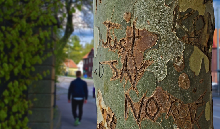 Tree trunk with the words: just say no
